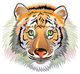 Head of cheerful striped tiger on white background. Vector cartoon image.