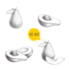 Avocado hand drawn sketch style set. Exotic fruits vector illustrations, Whole, cut and compositions. Isolated on white background.
