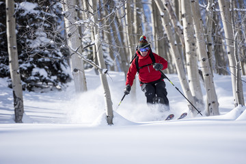 Man Skiing On Snowy Landscape Through An Aspen Grove