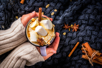Autumn, winter drinks. Ideas for Christmas, Thanksgiving, Halloween. Girl drink hot spicy pumpkin white chocolate, with marshmallow, cinnamon, anise. With knitted plaid. Copy space, hands, top view