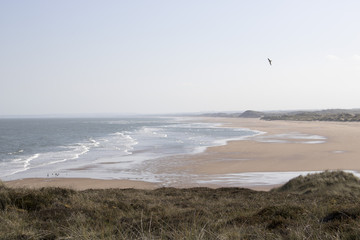 Waves crashing onto Beach