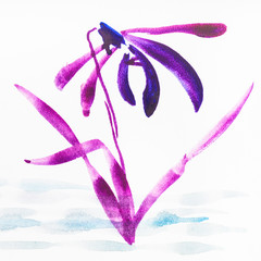 magenta orchid flower on white paper