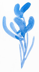blue sketch of orchid flower