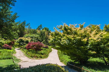 Jardin Japonais.