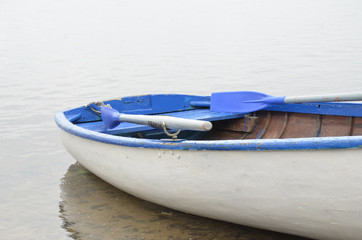 Old wooden white boat with sides, benches and raised blue paddles, is moored to shore in shallow water of forest lake on overcast summer day