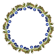 Round frame with blueberry