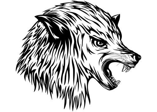 wolf growls