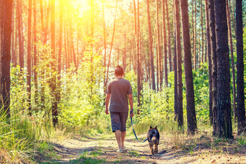A man with a dog on a leash walks along a dirt road in the forest