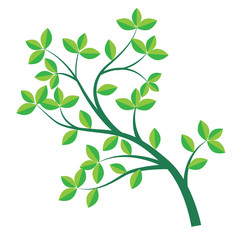 Isolated Green branch and leaf-Vector Illustration