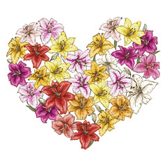 Heart of colorful lilies isolated on white background.  illustration.