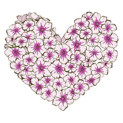 Heart of pink and violet phlox flowers isolated on white background.  illustration.