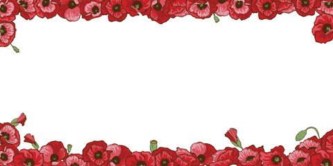 Floral frame of red poppy flowers isolated on white background.  illustration.