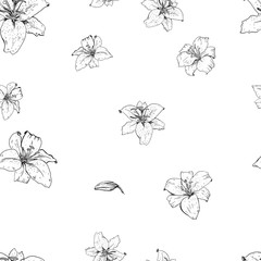 Lily flowers hand drawn in contour. Seamless pattern.  illustration.