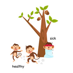 Opposite sick and healthy illustration