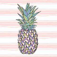Colorful vector pineapple