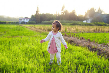 lovely little asian girl in the countryside