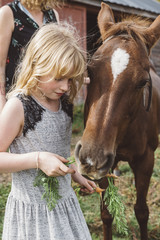Child feeding carrots to pony