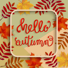 Hello, Autumn. A voluminous inscription in a frame with leaves of mountain ash and maple. Hand lettering, calligraphy. Banner, poster. Vector illustration