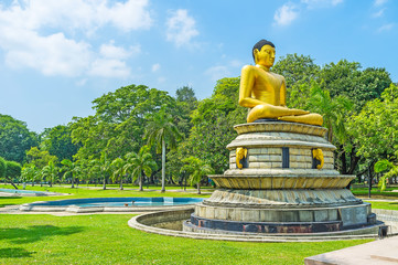 The Meditating Lord Buddha in Viharamahadevi park of Colombo
