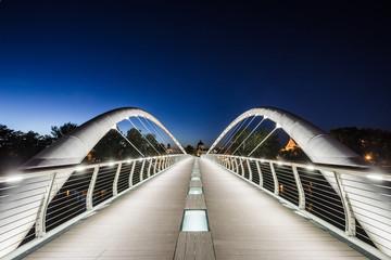 Bridge in blue hour Fotomurales