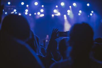 Fans at a concert