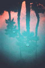 Pool Reflection, Palm Springs, California
