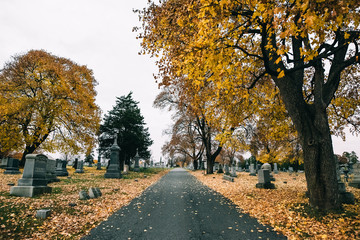 Road in Cemetary