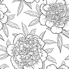 beautiful monochrome black and white seamless background peonies Hand-drawn.