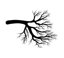 bare branch vector symbol icon design. Beautiful illustration isolated on white background