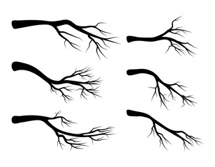 bare branch set vector symbol icon design. Beautiful illustration isolated on white background