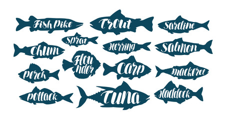 Fish, collection labels or logos. Seafood, food, fishing, angling set icons. Handwritten lettering, calligraphy vector illustration