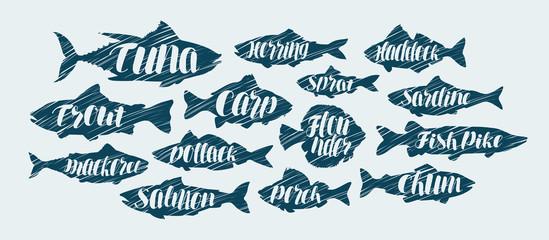 Fish, seafood icons set. Sketch vector illustration
