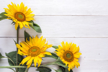 Background with a bouquet of yellow sunflowers on  white painted wooden planks. Space for text.