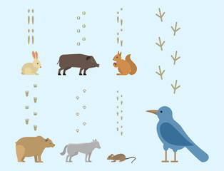 Animal footprints include mammals and birds foot print trace wildlife track steps wild nature silhouette vector