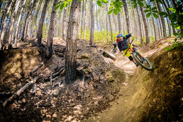 Mountain biker in Tuscany flying through a burned forest