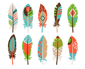 Set of colored bird feathers