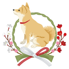 柴犬としめ縄飾り 横向き -Shiba inu into the Japanese wreath decoration -Side view