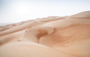 Rub al Khali Desert at the Empty Quarter, in Abu Dhabi, UAE