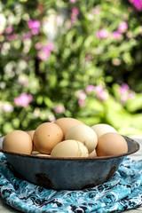 Free rangebrown eggs in a bow