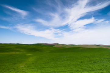 Green Agricultural Field Farm Blue Skies Country