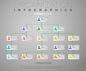 Organization Schema / Infographics Vectorial Design