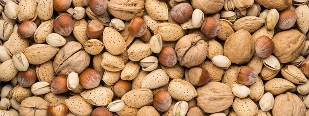 Mixed Nuts Panorama