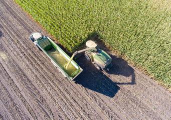 Wall Mural - Maisernte für Biogasanlage - Maishäcksler und Maisanhänger, Luftaufnahme