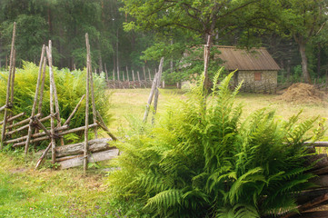 vintage, rustic house in the morning mist. The open air Museum in Tallinn. Architectural landmark and the history of Estonia. Morning rural landscape. The summer season.