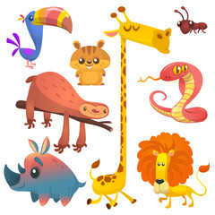 Cartoon african jungle animals. Vector illustrations of toucan, sloth, giraffe, chipmunk, ant, rhino and lion