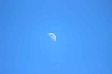 Moon on the blue sky