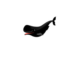 Icon bright vector whale
