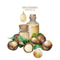 Watercolor macadamia oil