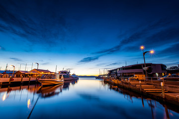 Tasmanian Waterfront Landscape, Australia