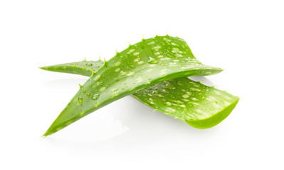 Aloe vera leaves with drops of water
